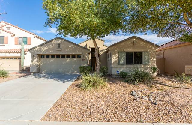 41192 W Hayden Drive, Maricopa, AZ 85138 (MLS #6148973) :: NextView Home Professionals, Brokered by eXp Realty