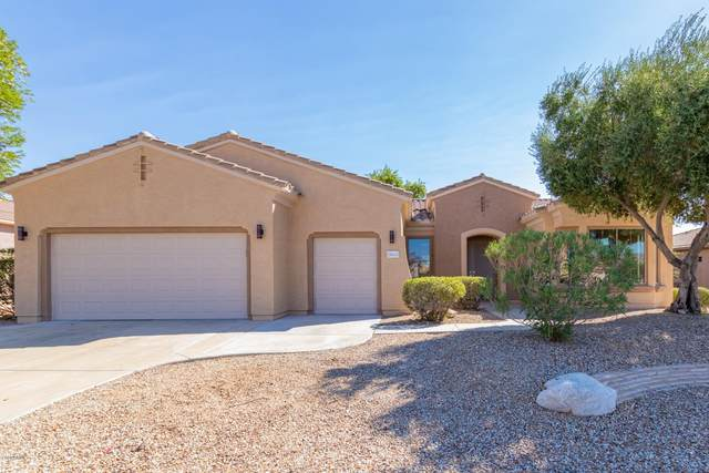 18643 N Fresco Court, Surprise, AZ 85387 (MLS #6149025) :: Walters Realty Group