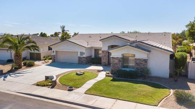 14687 W Columbus Avenue, Goodyear, AZ 85338 (MLS #6149034) :: The AZ Performance PLUS+ Team