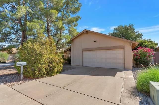 4353 W Kimberly Way, Glendale, AZ 85308 (MLS #6149071) :: The Riddle Group