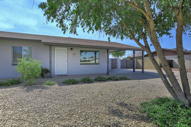 9525 E Adobe Road, Mesa, AZ 85207 (MLS #6149084) :: The Helping Hands Team