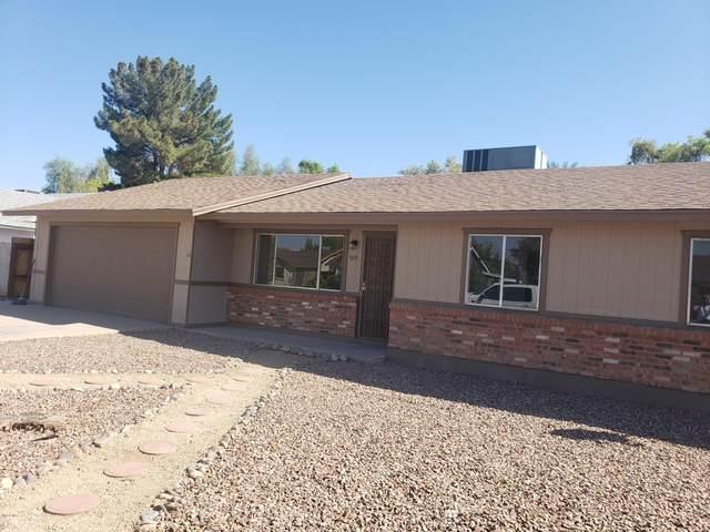 925 N Evergreen Court, Gilbert, AZ 85233 (MLS #6149098) :: My Home Group