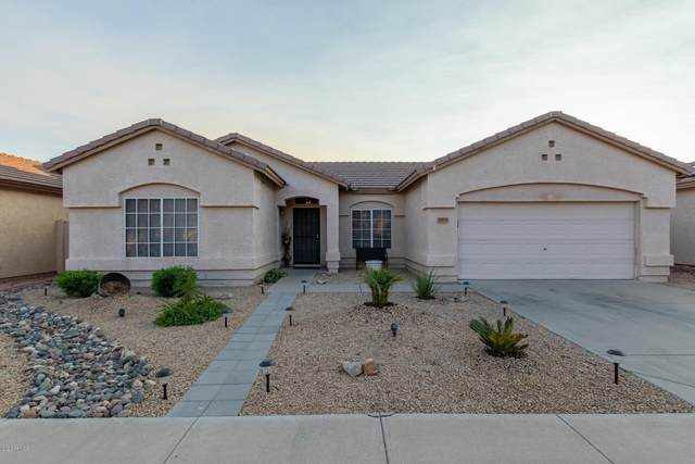 14833 W Juneberry Way, Surprise, AZ 85374 (MLS #6149100) :: Walters Realty Group