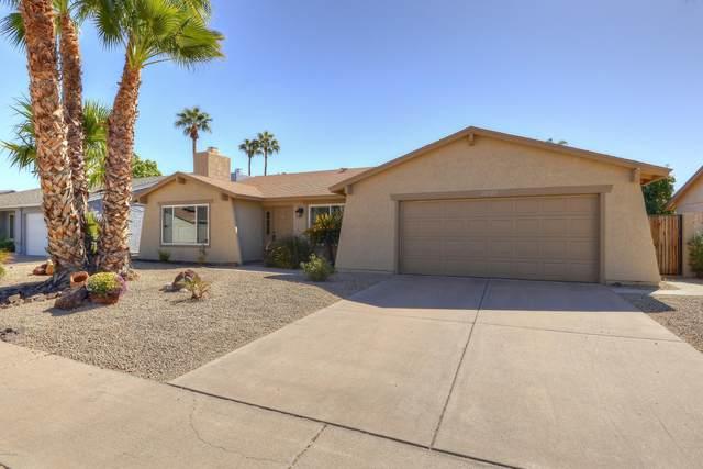 10705 E Sahuaro Drive, Scottsdale, AZ 85259 (MLS #6149157) :: John Hogen | Realty ONE Group