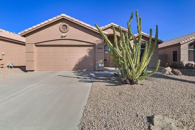 9042 W Escuda Drive, Peoria, AZ 85382 (MLS #6149236) :: Midland Real Estate Alliance