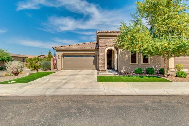 3914 E Ficus Way, Gilbert, AZ 85298 (MLS #6149272) :: The Property Partners at eXp Realty