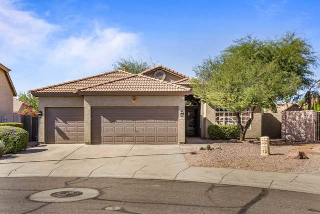 26274 N 45TH Place, Phoenix, AZ 85050 (MLS #6149301) :: Homehelper Consultants