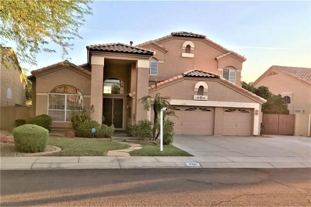 6301 W Shannon Street, Chandler, AZ 85226 (MLS #6149331) :: Howe Realty