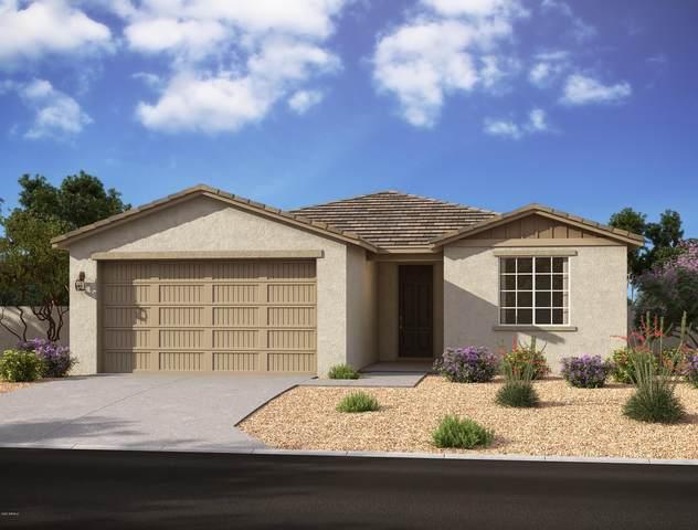 13362 W Lariat Lane, Peoria, AZ 85383 (MLS #6149339) :: The Carin Nguyen Team