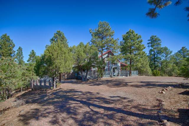 2904 Cedar Ridge Circle, Overgaard, AZ 85933 (MLS #6149379) :: The Carin Nguyen Team