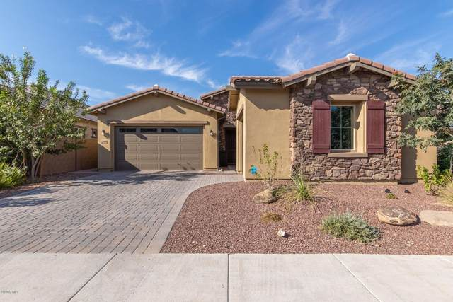 22468 N 96TH Drive, Peoria, AZ 85383 (MLS #6149396) :: The Carin Nguyen Team