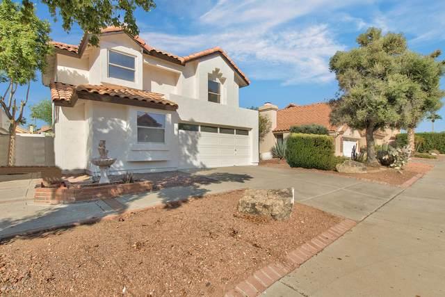 1956 E Renee Drive, Phoenix, AZ 85024 (MLS #6149404) :: Sheli Stoddart Team | M.A.Z. Realty Professionals