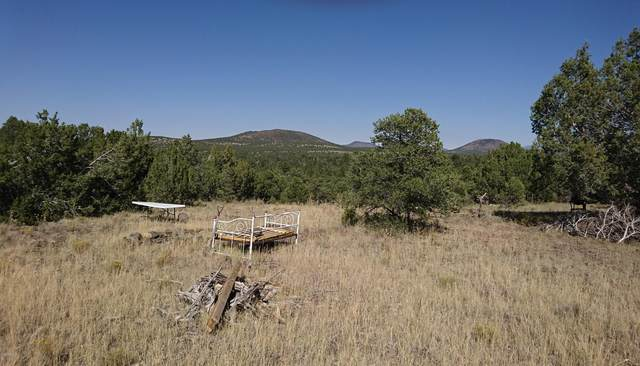 10 Cataract Canyon, Williams, AZ 86046 (MLS #6149422) :: Conway Real Estate