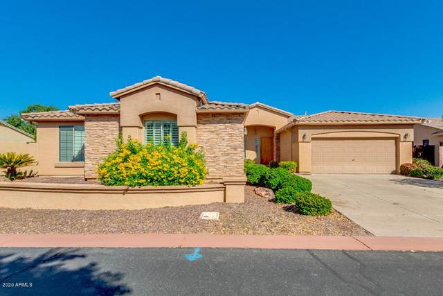 1160 E Hawken Way, Chandler, AZ 85286 (MLS #6149424) :: Klaus Team Real Estate Solutions