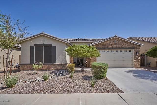 8023 S 23RD Drive, Phoenix, AZ 85041 (MLS #6149450) :: Power Realty Group Model Home Center