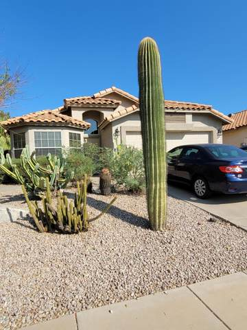 7440 E Keats Avenue, Mesa, AZ 85209 (MLS #6149454) :: The Daniel Montez Real Estate Group