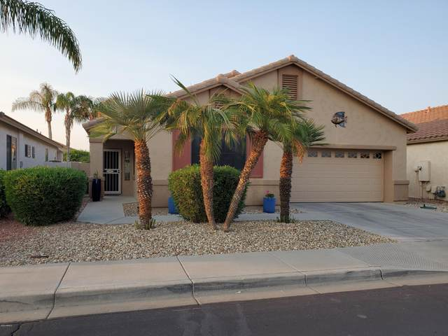 18140 W Addie Lane, Surprise, AZ 85374 (MLS #6149511) :: The W Group