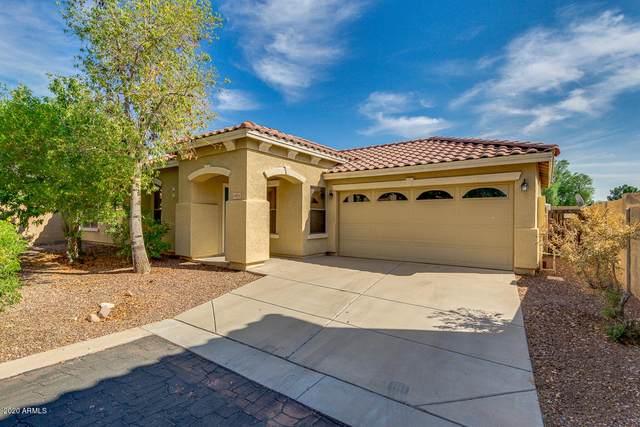 16914 W Marshall Lane, Surprise, AZ 85388 (MLS #6149512) :: Klaus Team Real Estate Solutions