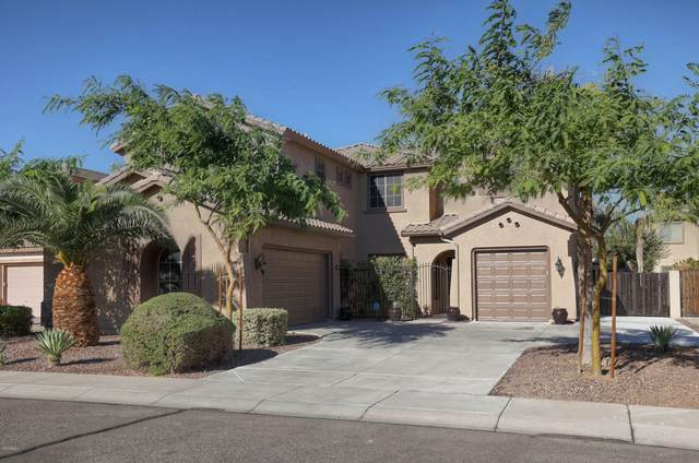 13262 W Monterey Way, Litchfield Park, AZ 85340 (MLS #6149514) :: BVO Luxury Group