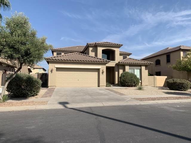 3518 E Eleana Lane, Gilbert, AZ 85298 (MLS #6149522) :: Klaus Team Real Estate Solutions