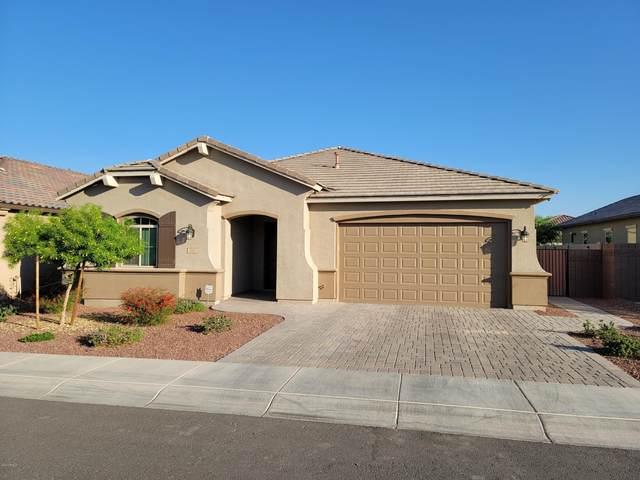 1180 W Beech Tree Avenue, San Tan Valley, AZ 85140 (MLS #6149529) :: The Helping Hands Team