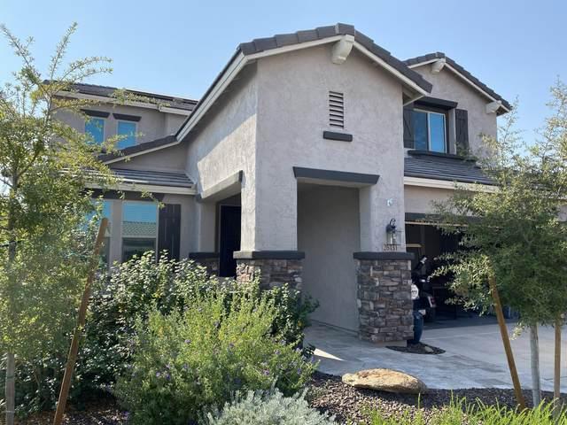 26131 W Wahalla Lane, Buckeye, AZ 85396 (MLS #6149577) :: Long Realty West Valley