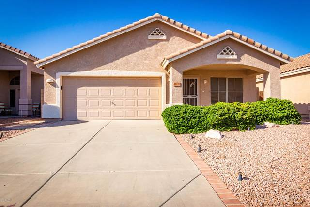 18122 N Skyhawk Drive, Surprise, AZ 85374 (MLS #6149630) :: Power Realty Group Model Home Center