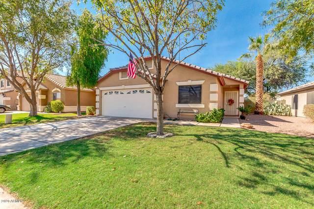 302 N Pioneer Street, Gilbert, AZ 85233 (MLS #6149645) :: Scott Gaertner Group
