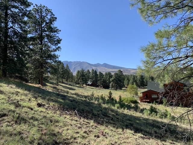 11668 N Rope Arabian Road, Flagstaff, AZ 86004 (MLS #6149674) :: Brett Tanner Home Selling Team