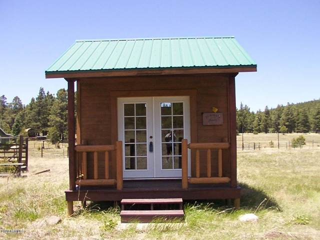 7228 W Freedline Drive, Flagstaff, AZ 86001 (MLS #6149693) :: Brett Tanner Home Selling Team