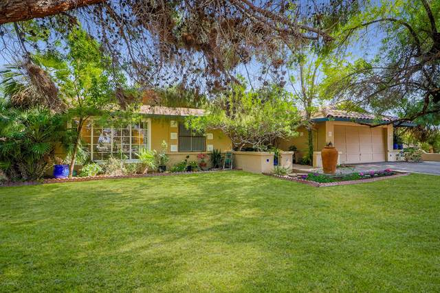 11209 N 40TH Street, Phoenix, AZ 85028 (MLS #6149694) :: D & R Realty LLC