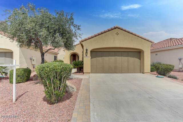 13014 W El Sueno Court, Sun City West, AZ 85375 (MLS #6149703) :: Maison DeBlanc Real Estate
