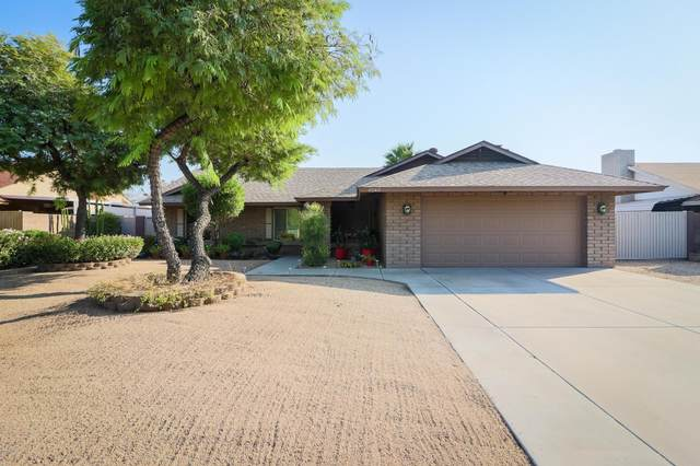 6243 W Cholla Street, Glendale, AZ 85304 (MLS #6149711) :: Homehelper Consultants