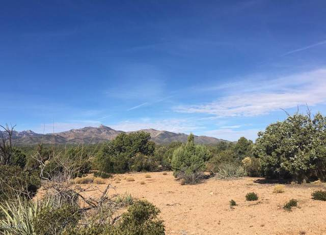 Lot 31-I E Canter Lane, Kingman, AZ 86401 (MLS #6149775) :: The J Group Real Estate | eXp Realty