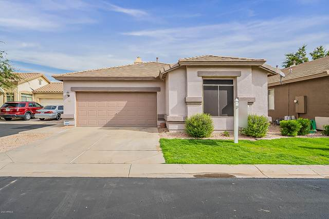 1916 E Hawken Place, Chandler, AZ 85286 (MLS #6149803) :: My Home Group