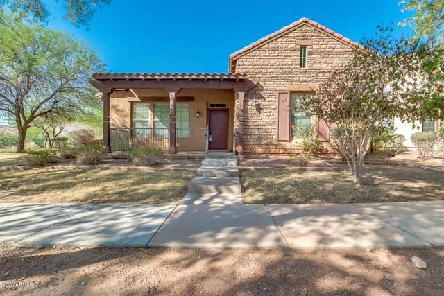 3910 N Edith Way, Buckeye, AZ 85396 (MLS #6149852) :: My Home Group