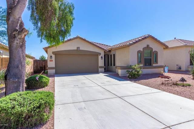429 W Dexter Way, San Tan Valley, AZ 85143 (MLS #6149880) :: NextView Home Professionals, Brokered by eXp Realty