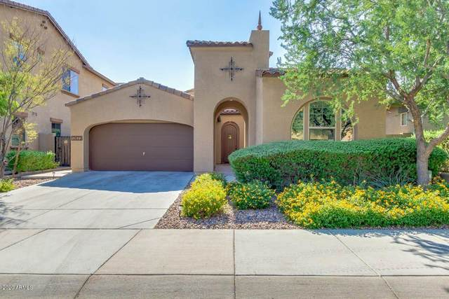13623 W Creosote Drive, Peoria, AZ 85383 (MLS #6149892) :: Yost Realty Group at RE/MAX Casa Grande