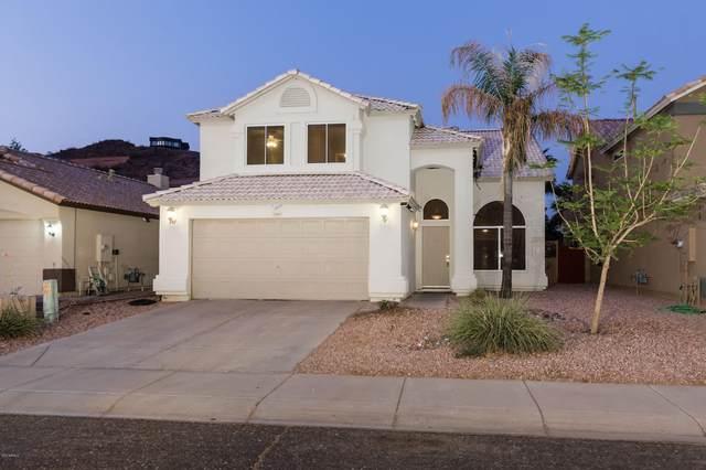 2148 E Rosemonte Drive, Phoenix, AZ 85024 (MLS #6149932) :: Sheli Stoddart Team | M.A.Z. Realty Professionals
