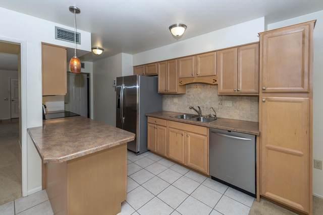 18641 N Conestoga Drive, Sun City, AZ 85373 (MLS #6149990) :: Selling AZ Homes Team