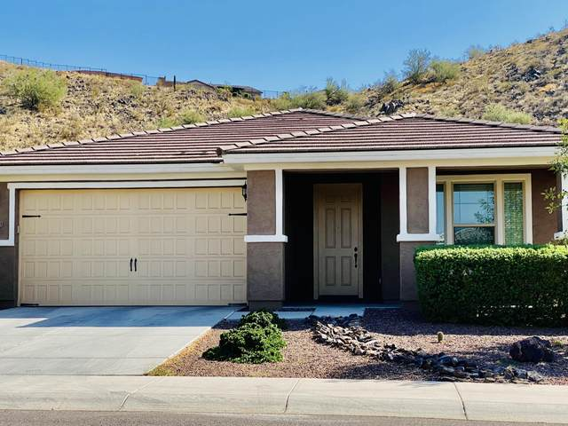 27213 N Skipping Rock Road, Peoria, AZ 85383 (MLS #6150004) :: CANAM Realty Group