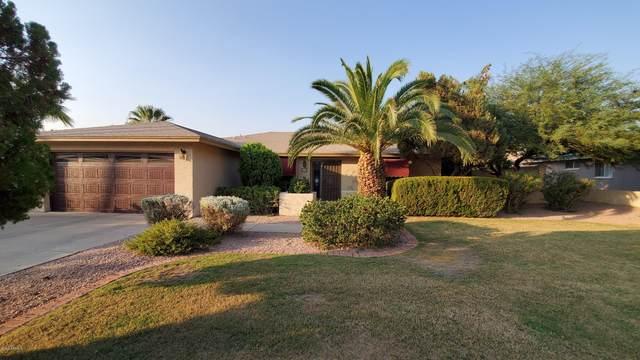 232 E Surrey Avenue, Phoenix, AZ 85022 (MLS #6150081) :: The Garcia Group