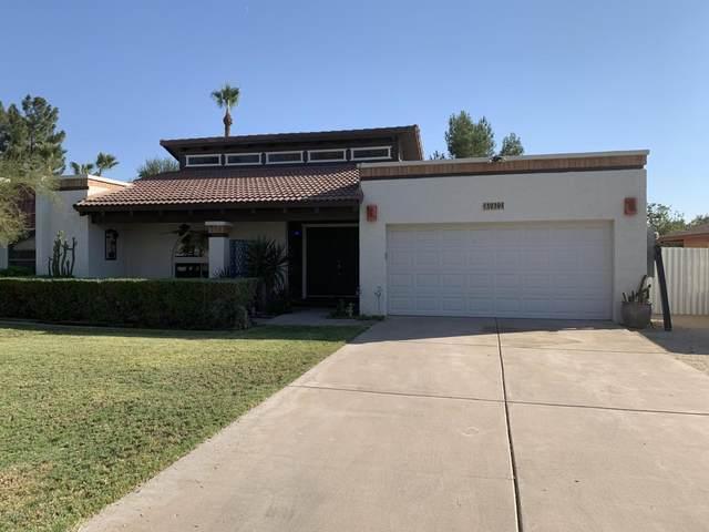 3939 W Voltaire Avenue, Phoenix, AZ 85029 (MLS #6150084) :: Long Realty West Valley