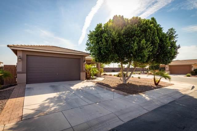 40905 N Hearn Street, San Tan Valley, AZ 85140 (MLS #6150092) :: The Ellens Team