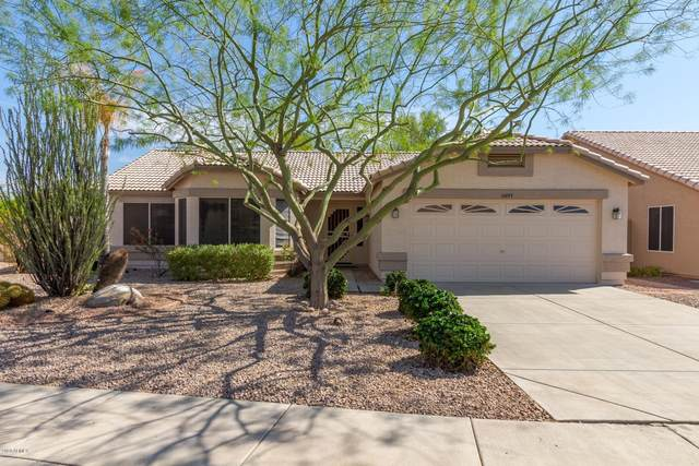 10877 W Oraibi Drive, Sun City, AZ 85373 (MLS #6150093) :: Long Realty West Valley