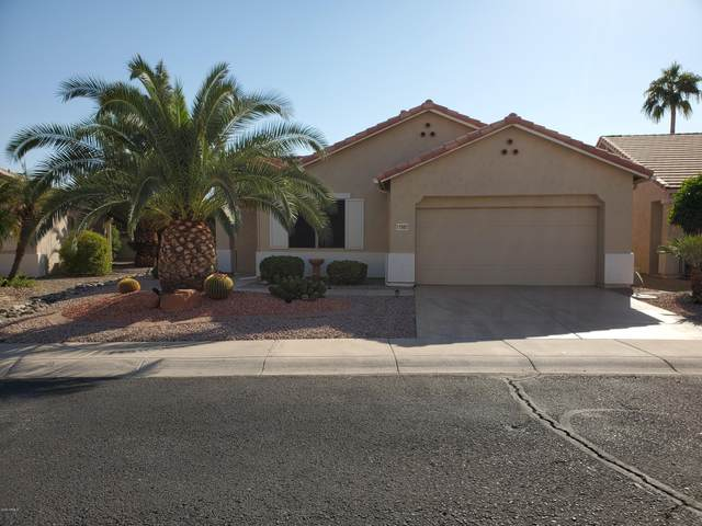 17983 W Deneen Way, Surprise, AZ 85374 (MLS #6150121) :: The Laughton Team