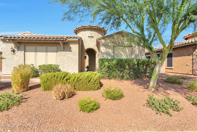 18384 W Paradise Lane, Surprise, AZ 85388 (MLS #6150157) :: The Laughton Team