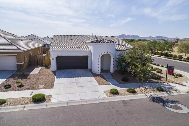 22429 E Camina Plata, Queen Creek, AZ 85142 (MLS #6150171) :: The Everest Team at eXp Realty