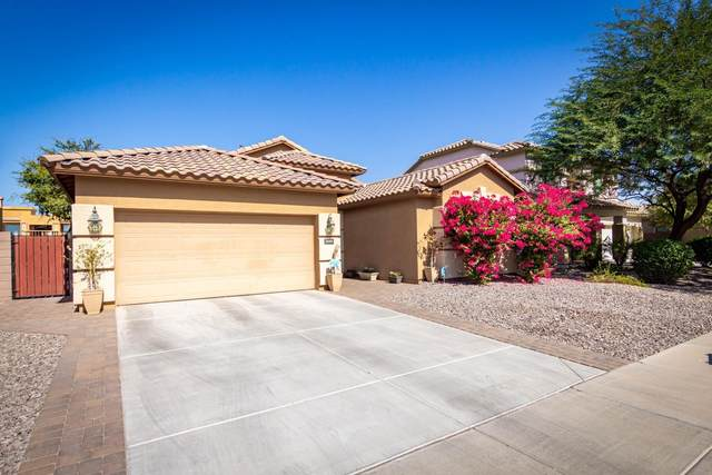 3640 E Kingbird Place, Chandler, AZ 85286 (MLS #6150231) :: The Property Partners at eXp Realty