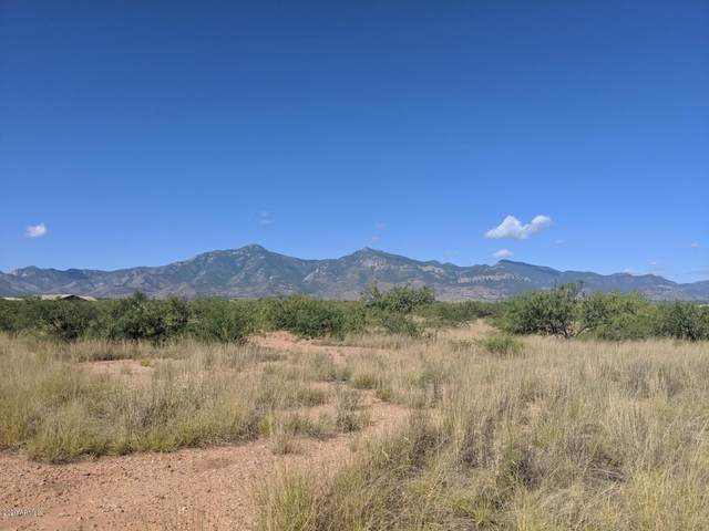 Lot B Moson Road, Hereford, AZ 85615 (MLS #6150253) :: The W Group